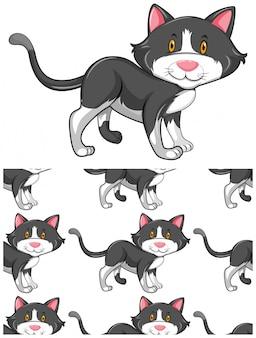 Modèle de chat sans couture isolé sur blanc