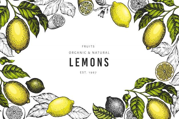Modèle de citronnier.