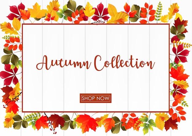 Modèle de collection automne avec cadre de feuilles colorées