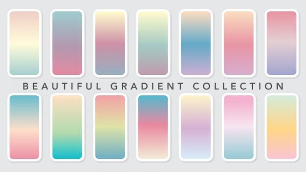 Modèle de collection de belles couleurs dégradées douces