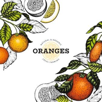 Modèle de conception d'agrumes. illustration de fruits couleur dessinés à la main de vecteur.