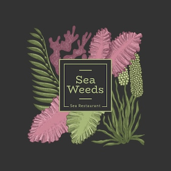 Modèle de conception d'algues. illustration d'algues vectorielles dessinés à la main.