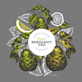 Modèle de conception de branche bergamote.