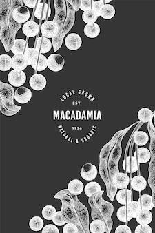 Modèle de conception de branche et de noyaux de macadamia dessinés à la main