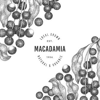 Modèle de conception de branches et de noyaux de macadamia dessinés à la main.