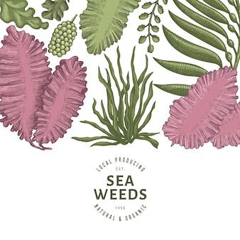 Modèle de conception de couleur d'algues