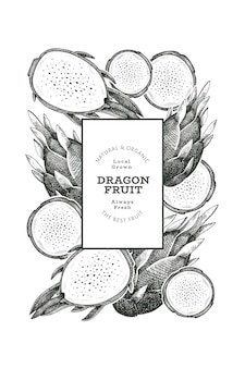 Modèle de conception de fruit du dragon dessiné à la main. illustration vectorielle d'aliments frais biologiques. bannière de fruits pitaya rétro.