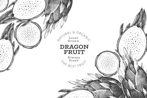 Modèle de conception de fruits du dragon dessinés à la main