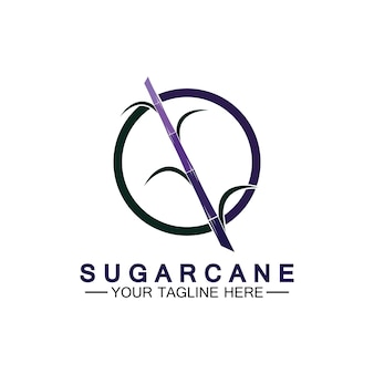 Modèle de conception d'illustration vectorielle de symbole d'icône de logo de canne à sucre