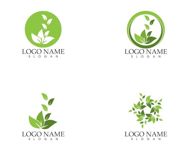 Modèle de conception de logo feuille nature