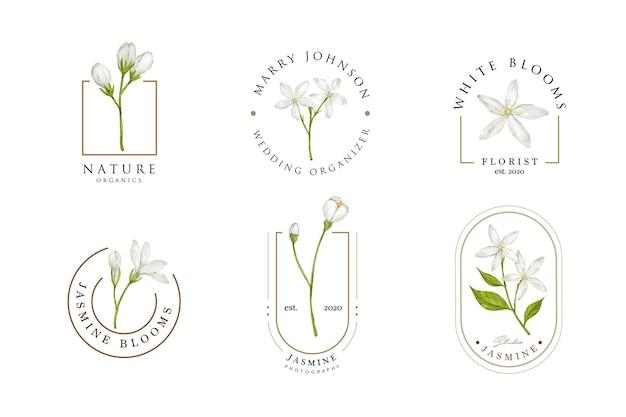 Modèle de conception de logo de fleur de jasmin blanc