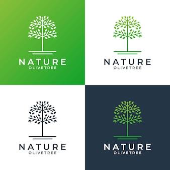 Modèle de conception de logo d'olivier pour votre spa d'entreprise, station balnéaire, santé, etc.
