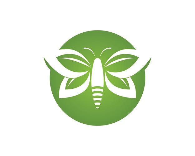 Modèle de conception de logo papillon vert