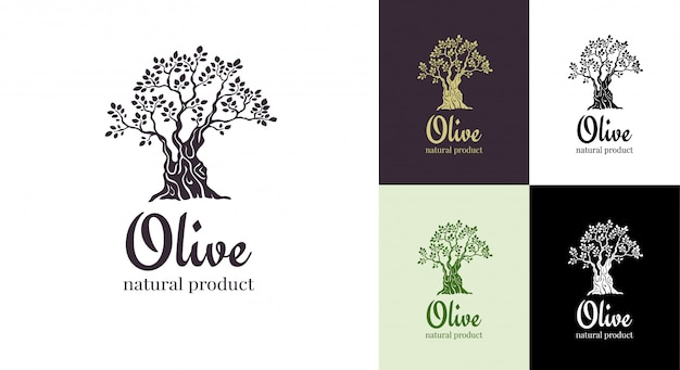 Modèle de conception de logo vectoriel olivier pour l'huile