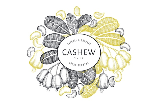Modèle de conception de noix de cajou croquis dessinés à la main. illustration d'aliments biologiques sur fond blanc.