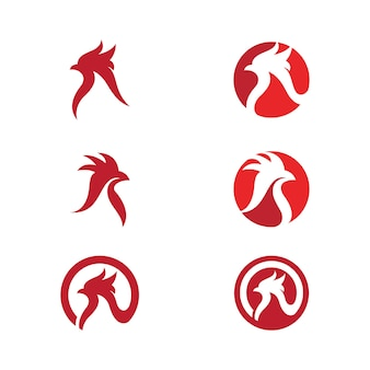 Modèle de conception de poulet icône vector illustration