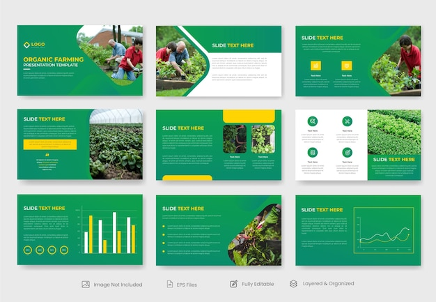 Modèle de diapositive de présentation de l'agriculture biologique ou de l'agriculture