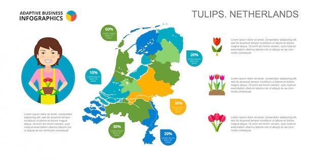 Modèle de diapositive tulipes de pays-bas