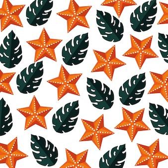 Modèle d'été avec des plantes tropicales feuilles et étoiles de mer