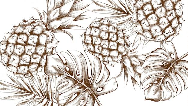 Modèle d'été tropique d'ananas
