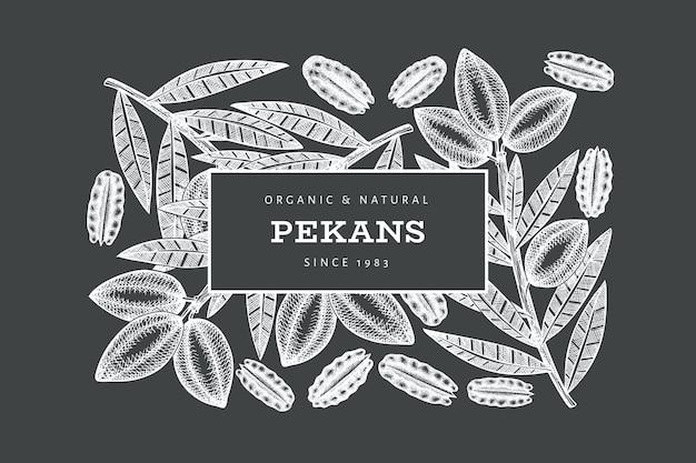 Modèle d'étiquette de branche et de noyaux de noix de pécan dessinés à la main.