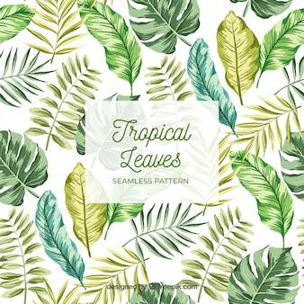Modèle de feuilles tropicales