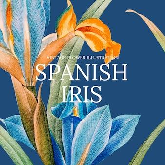 Modèle floral avec fond d'iris espagnol, remixé à partir d'œuvres d'art du domaine public