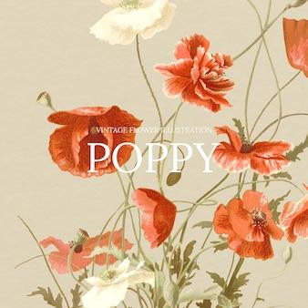 Modèle floral vintage avec fond coquelicot, remixé à partir d'œuvres d'art du domaine public