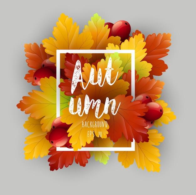 Modèle de flyer de feuilles d'automne avec des feuilles d'érable séchées