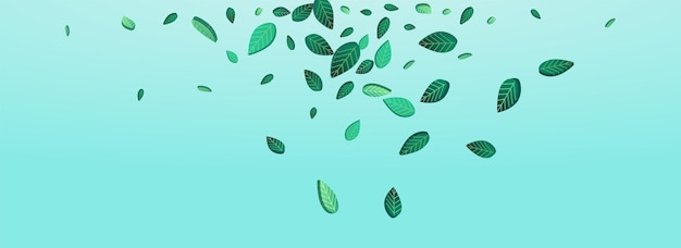 Modèle de fond bleu panoramique de vecteur de feuillage de marais. motif de verts de mouvement. feuilles de tilleul fly plant. brochure sur l'écologie des feuilles.