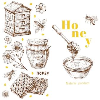 Modèle de fond de miel rétro avec des éléments dessinés à la main