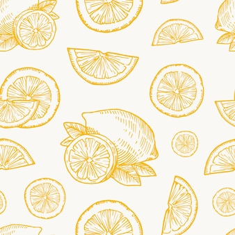 Modèle de fond sans couture de vecteur de récolte de citron, orange ou mandarine dessiné à la main