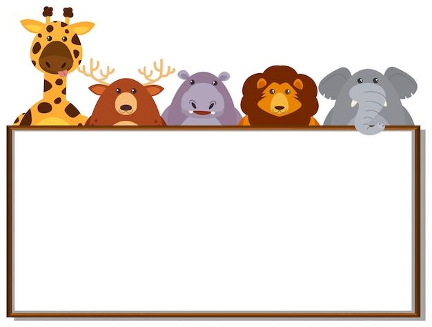 Modèle de frontière avec des animaux sauvages