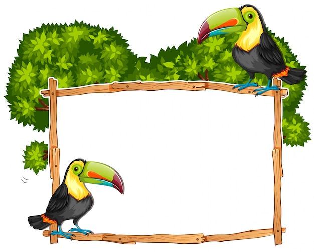 Modèle de frontière avec deux oiseaux toucan