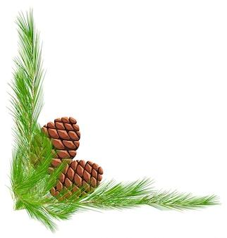 Modèle de frontière avec des pommes de pin et des feuilles