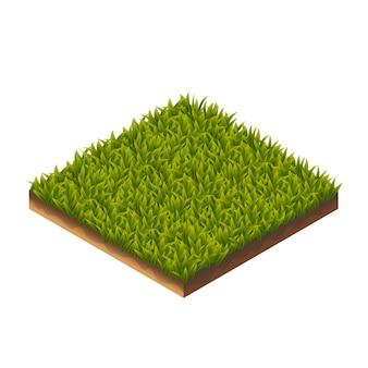 Modèle d'herbe isométrique