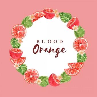 Modèle d'illustration de bordure de cadre d'agrumes orange sanguine aquarelle