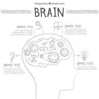 Modèle d'infographie de cerveau humain avec des icônes