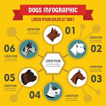Modèle d'infographie de races de chien, style plat