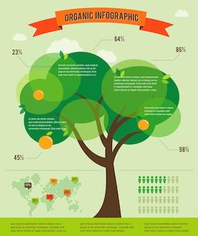 Modèle infographique de concept d'écologie