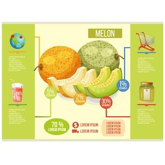 Modèle infographique de melon