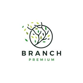 Modèle de logo arbre branche cercle feuille arbre