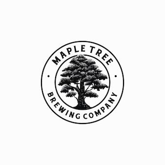 Modèle de logo d'arbre d'érable dessiné à la main logo de société de brassage vectoriel
