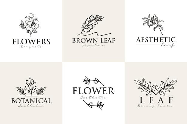 Modèle de logo de beauté esthétique botanique féminine
