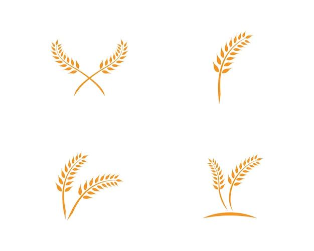Modèle de logo de blé