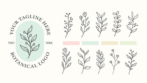 Modèle de logo botanique