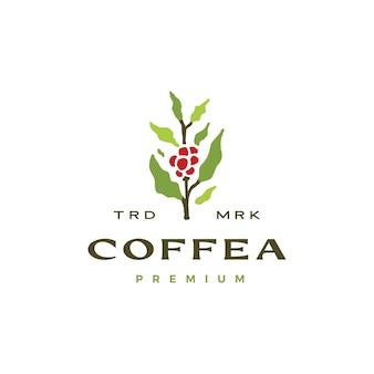 Modèle de logo de caféier café