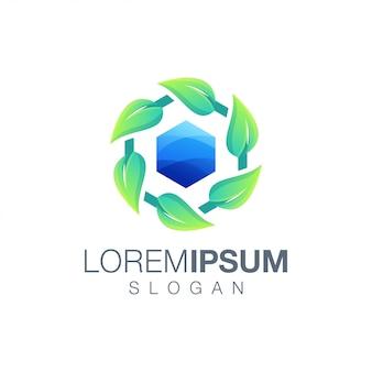 Modèle de logo couleur feuille hexagonale