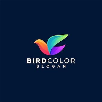 Modèle de logo couleur oiseau