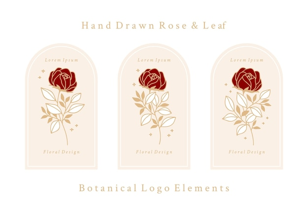 Modèle de logo de fleur rose botanique vintage dessiné à la main et collection d'éléments de marque de beauté féminine